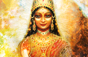 Lakshmi in a Galaxy